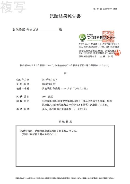 報告書16003808-1